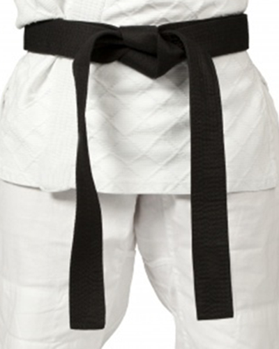 Judo Toronto Chiropractor